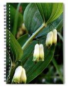 Polygonatum Odoratum Spiral Notebook