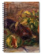 Pomegranate And Figs Spiral Notebook