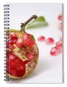 Pomegranate And Seeds  Spiral Notebook