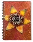 Pomegranate Blossom End Spiral Notebook