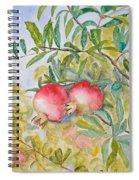 Pomegranates Spiral Notebook