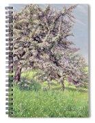 Pommiers Fleuris Spiral Notebook