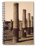 Pompeii, Excavation Spiral Notebook