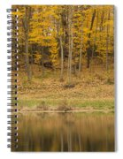 Pond And Woods Autumn 1 Spiral Notebook