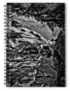 Pond At Great Falls #4 Spiral Notebook