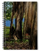 Pond Fragments Spiral Notebook