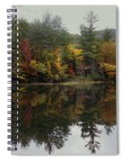 Pond In Jackson Spiral Notebook
