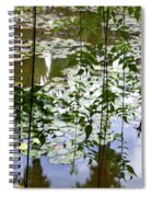 Pond In Marrakesh Spiral Notebook