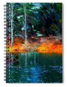 Pond In The Woods Spiral Notebook