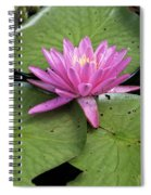 Pond Lily And Bud Spiral Notebook