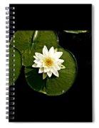 Pond Lily Spiral Notebook