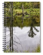 Pond Reflections Spiral Notebook