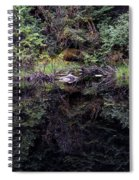 Pond Reflections -- Tongass National Forest Alaska Spiral Notebook
