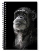 Ponder Spiral Notebook