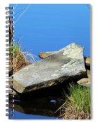 Pondside Stone Spiral Notebook