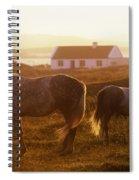 Ponies Grazing In A Field, Connemara Spiral Notebook