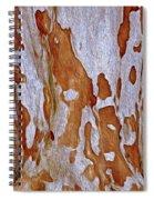 Pony Bark 15 Spiral Notebook