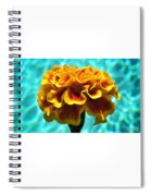 Pool Side Beauty Spiral Notebook