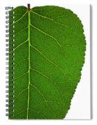 Poplar Leaf A Key To Biofuels Spiral Notebook