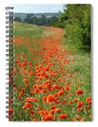 Poppies Awash Spiral Notebook