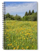 Poppies Forever Spiral Notebook