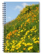 Poppies Hillside Meadow 17 Blue Sky White Clouds Giclee Art Prints Baslee Troutman Spiral Notebook
