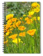 Poppies Hillside Meadow Landscape 19 Poppy Flowers Art Prints Baslee Troutman Spiral Notebook