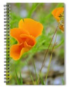 Poppies In The Wind Spiral Notebook
