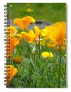 Poppies Meadow Summer Poppy Flowers 18 Wildflowers Poppies Baslee Troutman Spiral Notebook