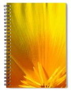 Poppies Orange Poppy Flower Close Up 2 Sunlit Poppy Baslee Troutman Spiral Notebook