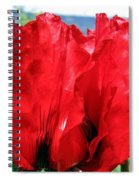Poppies Plus Spiral Notebook