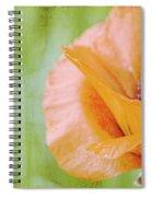 Poppy 9 Spiral Notebook