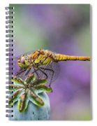 Poppy And The Dragonfly Spiral Notebook