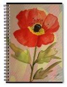 Poppy Art 17-01 Spiral Notebook