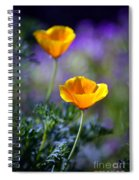 Poppy Ballet Spiral Notebook