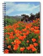 Poppy Explosion Spiral Notebook