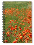 Poppy Field Spiral Notebook