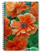 Poppy Fields Spiral Notebook