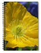 Poppy Flair Spiral Notebook