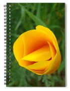 Poppy Flower Bud 9 Orange Poppies Green Meadow Art Prints Baslee Troutman Spiral Notebook