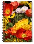 Poppy Flower Garden Spiral Notebook