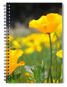 Poppy Flower Meadow 11 Poppies Art Prints Canvas Framed Spiral Notebook
