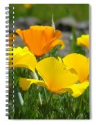 Poppy Flower Meadow 14 Poppies Orange Flowers Giclee Art Prints Baslee Troutman Spiral Notebook