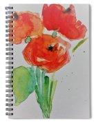 Poppy Flowers 1 Spiral Notebook