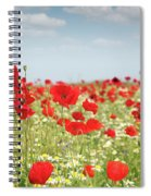 Poppy Flowers Field Nature Spring Scene Spiral Notebook