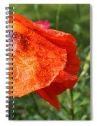 Red Poppy II Spiral Notebook
