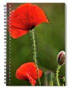 Poppy Image Spiral Notebook