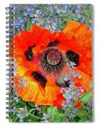 Poppy In Blue Spiral Notebook
