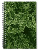 Poppy Leaves Spiral Notebook