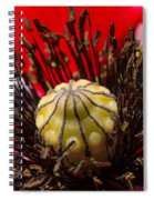 10092 Poppy Love #01 Spiral Notebook